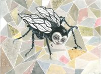 The Fly  - 2014, 23 x 31 cm., Akvarel, tusch og blyant på papir.
